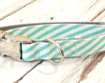 Aloe Seersucker Striped Dog Collar, preppy, metal hardware