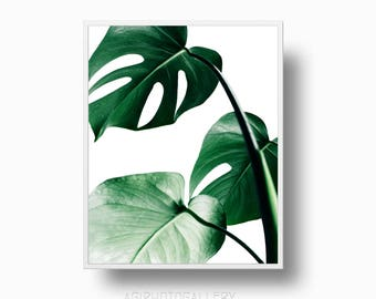 Palm Monstera Leaf Print, Green Leaf Print, Monstera Deliciosa Tropical Philodendron, Tropical Wall Art, palm botanical print, botanical art