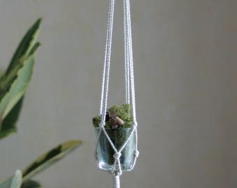 Succulent Pot Holder - Succulent Hanging - Macrame Plant Hanger - Hanging Planter - Rope Pot Holder - Rope Planter - Macrame Decor