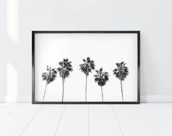 Beach Print/ Palm Tree Print/ Black and White Palm Trees/ Tropical Wall Art/ Minimalist Palm Tree Print/ Modern Wall Prints/ Printable Art