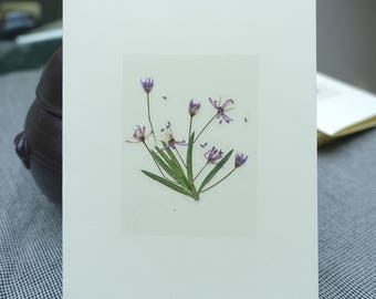 Handmade real pressed flower card / All occasion / Ready to ship