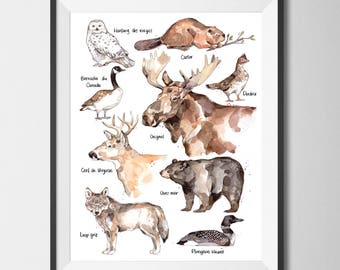 Animals Fauna Nature Illustration | Watercolor | Print Wildlife Nature | Marie-Eve Arpin | Drawing | Print Deer Moose Bear Wolf | Art | Deco