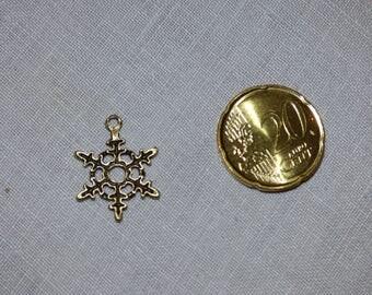 Snowflake CHARM branch bronze