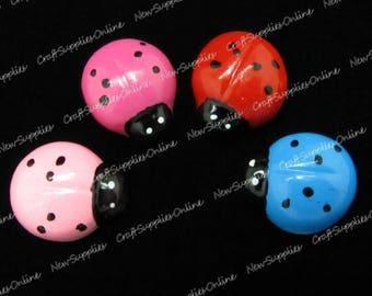 Miniature pink Ladybug
