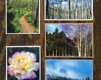 5 - Utah and Alaska Photo Greeting Card Set Note Cards with Envelope