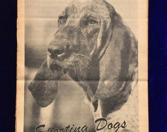Coonhound Dog Magazine Photograph 1947 Full Page