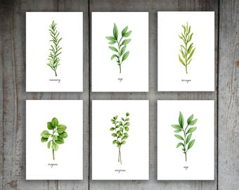 You Choose 6 Kitchen Herbs Watercolor Illustration Art Print Set of 6 Kitchen Decor Wall Art Signs