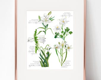 Joyful Mysteries Botanical Rosary print