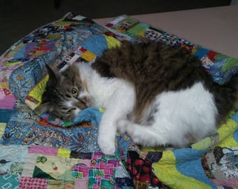 Kitty Quilts, Cat Gifts, Cat Quilts, Cat Blankets, Cat bed blankets, Pet blankets, Homemade cat gift, Cat Beds, Size 46 x 36