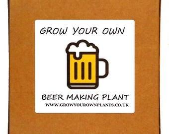Grow Your Own Beer Hops Plant Kit - Indoor Gardening Gift For Men, Women Or Children - Lovely Birthday Gift