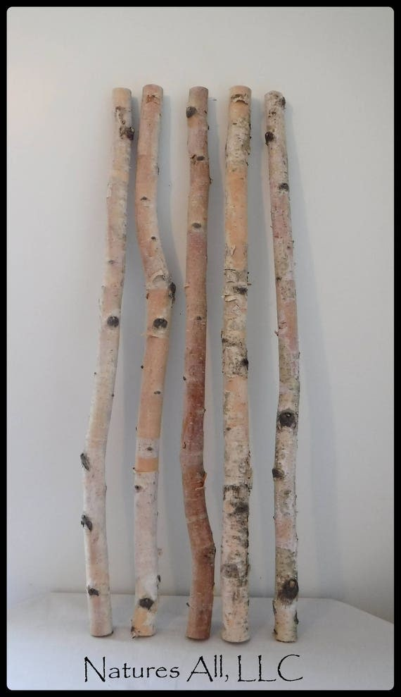 White Birch Sticks/Decorative White Birch/ 5 PC/3 Ft. Lengths/White Birch Pole/Rustic Wedding And Home Decor/Shipping Included
