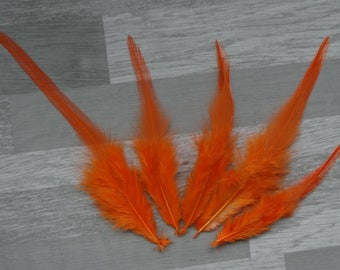 Set of 20 Rooster feathers orange