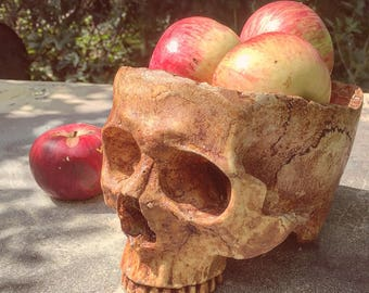 Human Skull Bowl Decor