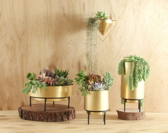 Stand By Me Brass Planter - Succulent Cacti Mid Century Indoor Gold Pot 100% Pure Brass
