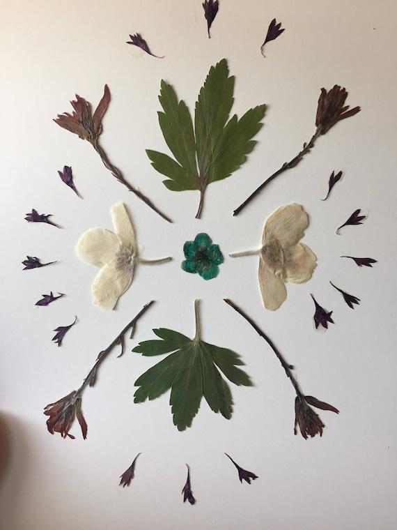 Real Flower Mandala Art- Pressed Flower Art- Green, Deep Red and White- 8x10 Framable Real Botanical Art- Floral Decor- Specimen Display
