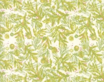 Moda Poppy Mae Quilt Fabric 1/2 Yard By Robin Pickens - Cloud 48603 11