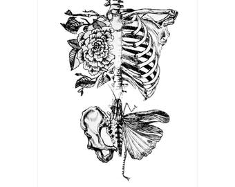 Human skeleton butterfly  tattoo / temporary tattoos