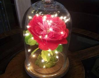LARGE Handmade Rose LED Lights/Domed Enchanted RedCrepe Paper Rose/Fairy Lights Glass Cloche/David Austin Rose/MusicalBox