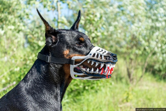 Werewolf zombie dogs muzzle. White color Doberman and other