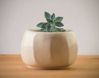 Ceramic planter, succulent planter, pottery planter, flower pot, ceramic pot, yellow planter, yellow bowl,handmade planter, indoor gardening