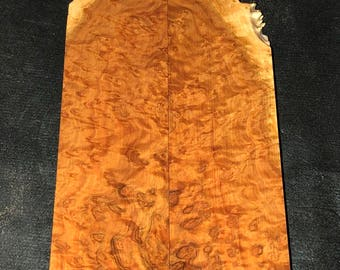 Stabilized Snap & Rattle Burl - Knife Scales E-031