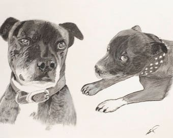 Custom pet portrait- sketch of pet - Unique Gift for Pet Lover - Pet Memorial - Pet Lover Gift Idea - 9 x 12 inch charcoal drawing