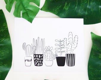Cacti Pots