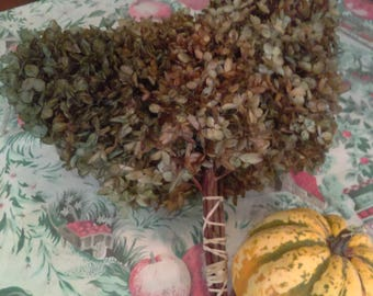 Dried Hydrangea Flower Bunch
