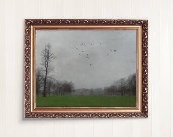 Foggy landscape Photography, Moody  Fine Art Trees Home Decor, Fog Print, Landscape Art Print