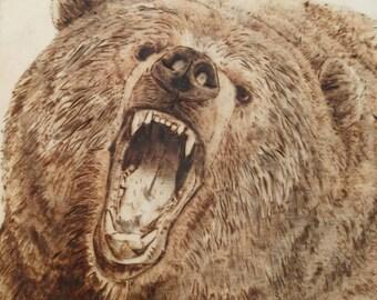 Angry bear box