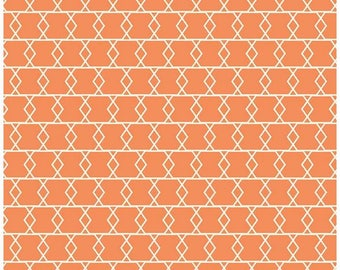 Orange Cotton Fabric Criss Cross - Apricot and Persimmon by Carina Gardner and Riley Blaket Designs - RBD c4903 Orange Southwest Fabric