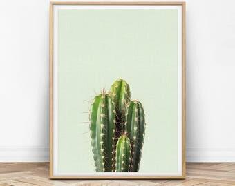 Cactus Wall Art, Cacti Print, Cactus Photography, Cactus Printable, Cactus Decor, Green Wall Art, Art Printable, Cactus Plant Wall Art