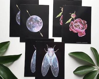 Peony Cicada Moon A6 Blank Notecards 6 Pack Envelopes Greeting Thank you Anniversary Gift Colored Pencil Art Cards Headspace Illustrations