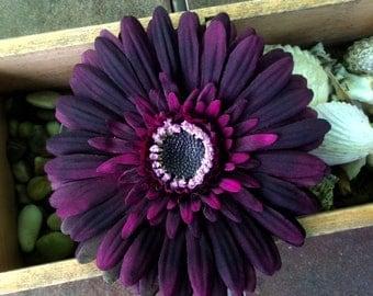 Eggplant Purple Gerbera Daisy Silk Flower hair clip