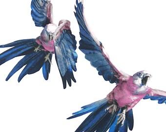 Bird printed polyester Twill