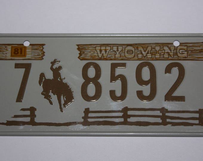 1981 Wyoming Wheaties Post Cereal Premium Bike Mini Metal License Plate