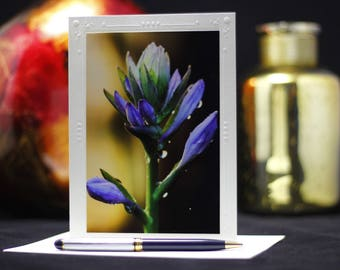Photography Cards, Flower Photography, Blank Note Cards, Thank You Cards, purple flowers, Greeting Cards photography, Blank cards