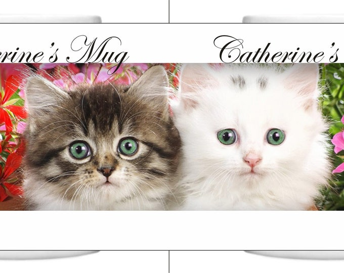 Cats Lovers Personalied Mugs