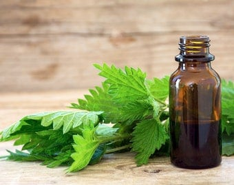 Organic Nettle Leaf- Herbal Oil / Apply Directly onto Skin, Hair Or add to Your Favorite Formula!