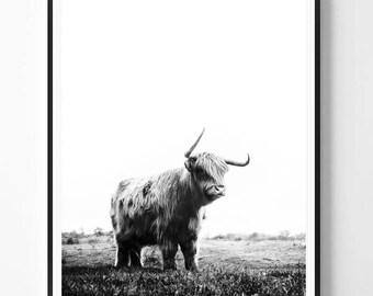 Bull Print, Bull  art, Bull photo, Black and White print, Animal print, Minimal photo, Minimalist, Nature Wall Art, Scandinavian Printable