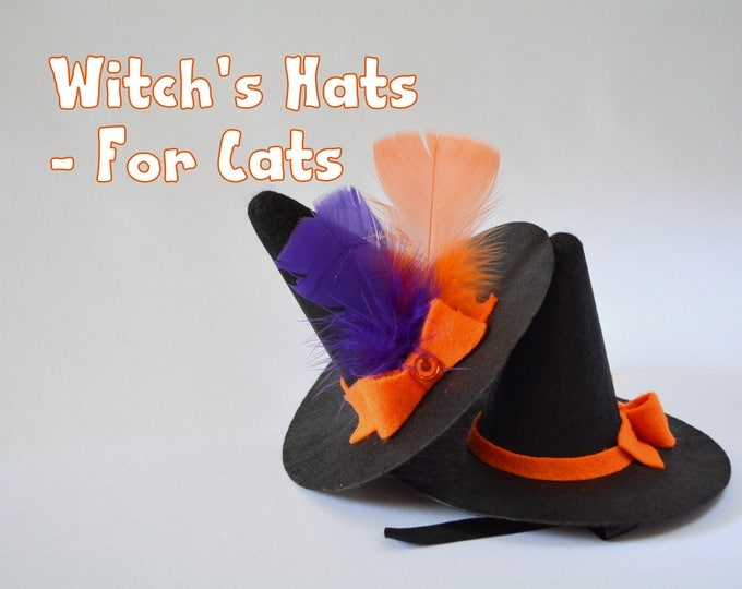 Featured listing image: Halloween hat for cat 'Witch's Hat' - black felt hat for cat - pet photography props - witches hat for dog