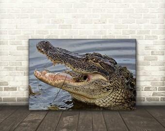 Alligator Head Canvas Print Art