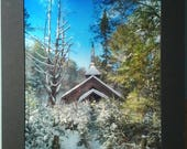 Faith and Frost - 16x20 photographic wall art