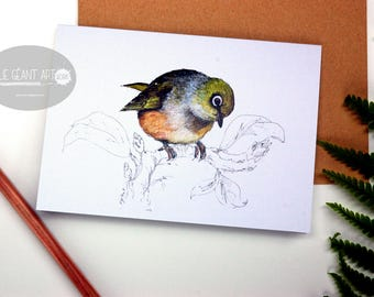 Sylvereye - Waxeye folded card from the New Zealand native birds series by Emilie Geant, from original watercolor painting