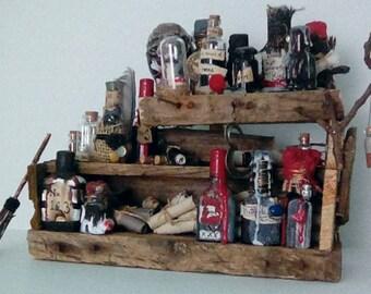 Recycled Art Miniature Potion Shelf