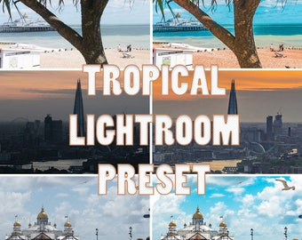 TROPICAL LIGHTROOM PRESETS (Pack of three)