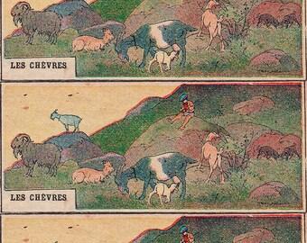 """Magnet Vintage """"Goats"""" magnet, stationery, Planner, old, Old School kitchen Decoration"""