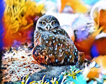 Owl ~ Burrow Owl ~ Flying Bird ~ Nesting ~ Nature ~ Animal ~ Bird ~ Photography ~ Wall Art ~ Digital Print ~ Home Decor ~ Outdoors ~ Colors