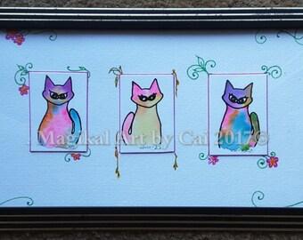 Surprise!! Z. Cats!