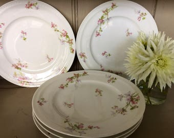 Five Frank Haviland Limoges Plates Decorated with Honeysuckle